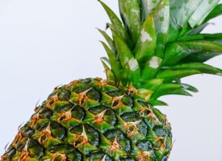 how do pineapples grow