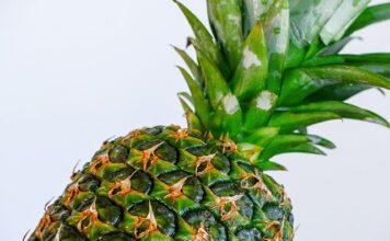 how do pineapples grow